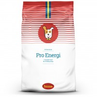Pro Energi